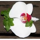 Boutonnière en Orchidée