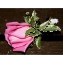 Boutonnière en Rose
