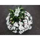 coussin roses et blancs