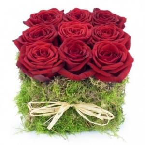 carré de roses rouges