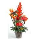 bouquet exo